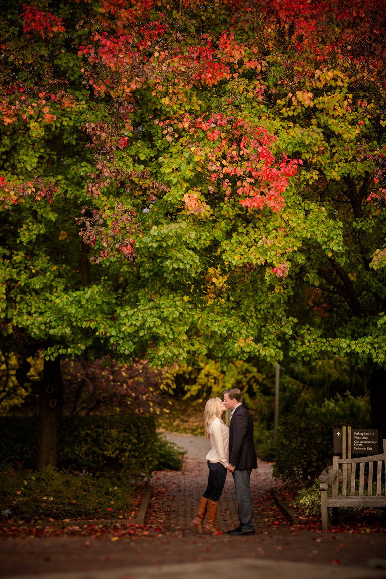 Chicago Botanic Garden Engagement Pictures